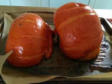 Roasted gourds
